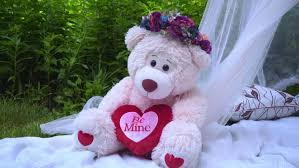 teddy decorations pink with flowers decoration white teddy on