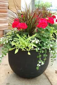 patio ideas outdoor planter ideas for winter patio containers