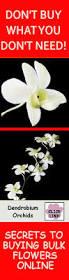 18 best cheap bulk flowers images on pinterest florist supplies