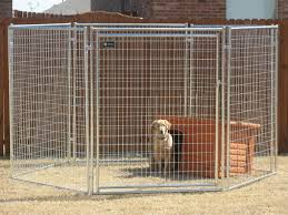large dog kennel haotian hardware wire mesh products co ltd