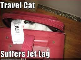 Jet Lag Meme - 10 ways to get rid of jet lag socawlege