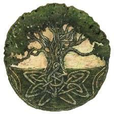 the mighty oak webpaws com