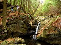 Massachusetts nature activities images 79 best green architecture images green jpg
