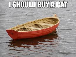 I Should Buy A Boat Meme - i should buy a cat imgur