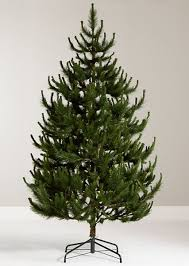 scotch pine christmas tree 10 best artificial christmas trees that look real