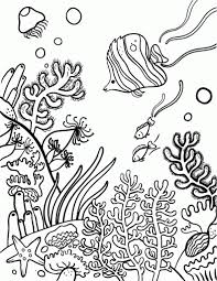 free pdf coloring pages coral coloring page aecost net aecost net