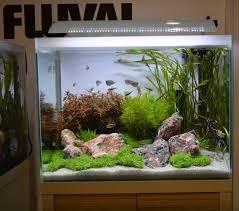 Fluval 125 Cabinet Fluval Unveils New Premium Freshwater Aquarium Series Reefs Com