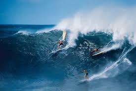 thanksgiving surf