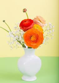 Ranunculus Flower Free Photo Flower Ranunculus Flower Vase Free Image On