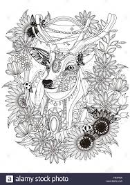 gorgeous deer with floral wreath coloring page stock