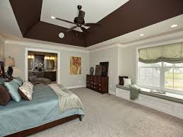 Best Tray Ceiling Images On Pinterest Trey Ceiling Tray And - Bedroom ceiling paint ideas