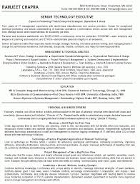 Team Manager Resume Sample by It Manager Resume Sample Commercetools Us