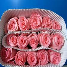 Wholesale Fresh Flowers Jasmine Flower Jasmine Flower Suppliers And Manufacturers At