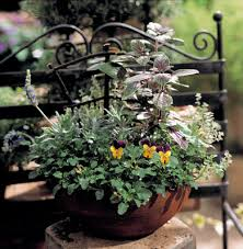 container gardening ideas themed herb pots