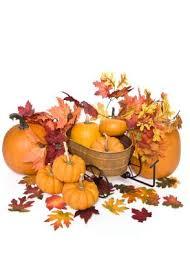 thanksgiving themes lovetoknow