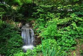 Clemson Botanical Garden by Gone Gardening South Carolina Botanical Garden