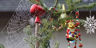 why are spider webs a popular decoration in poland