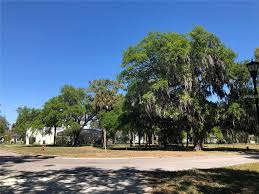 Vacation Mobile Homes For Rent Brandon Fl 8902 Key West Island Way Riverview Fl 33578 Estimate And Home