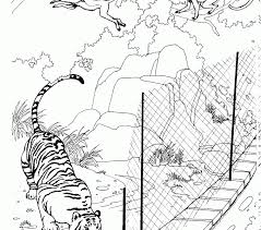 printable zoo animal coloring pages zoo coloring pages best coloring pages adresebitkisel com