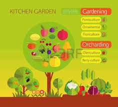 Organic Kitchen Gardening - gardening organic cultivation of fruit and vegetables fruit