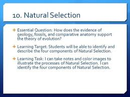 12 natural selection u2013 day 3 essential question how does