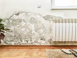 water damage repair u0026 mitigation mold detection u0026 removal