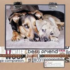 dog scrapbook album dog wanted counted cross stitch kit 8 x8 14 count cross