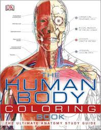 Barnes And Noble Publishing The Human Body Coloring Book By Dk Publishing 9780756682347