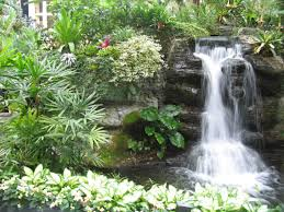 waterfalls striking complement to backyard layout garden home 31