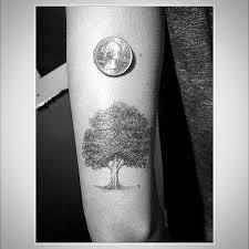 grey and black oak tree on left bicep