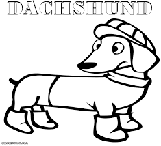 enjoyable design dachshund coloring pages printable page free pdf