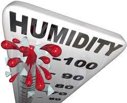it u0027s not the heat it u0027s the humidity lifestyle capecodtimes