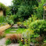 Wildlife Garden Ideas Garden Designs Wildlife Garden Design Ideas How To Design And