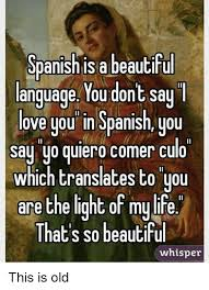 Old Language Meme - spanish is a beautiful language you dont say love you in spanish you