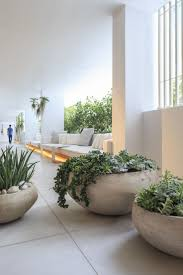 best 25 white planters ideas on pinterest indoor cactus home