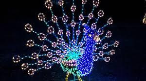 zoo lights baton rouge zoolights at the phoenix zoo begins monday wafb 9 news baton rouge