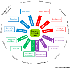 beyond ecosystem services valuing the invaluable trends in