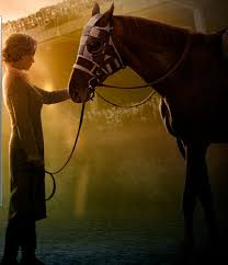 horses in movies secretariat equitation i closed pinterest