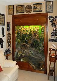10 gal vertical vivarium tutorial frogs vivs plants oh my