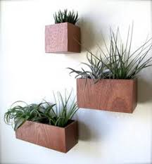 Wall Hanging Planters by A Unique Wall Mount For Terrariums And Plant Vessels Wall Mount