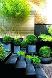 Bamboo Garden Design Ideas Decoration Bamboo Garden Designs
