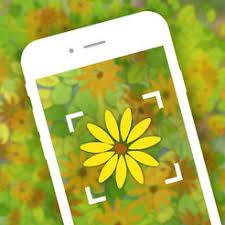 garden flower identification plant identifier free on the app store