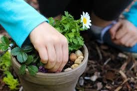 whimsical mini flower gardens gluesticks