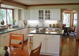 Types Of Kitchen Cabinet with Kitchen Plastic Cabinet Philippines Customized Kitchen Cabinets