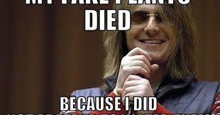 Mitch Hedberg Memes - i used to repost mitch hedberg memes album on imgur