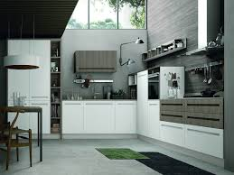 modern kitchens designs sydney eurolife