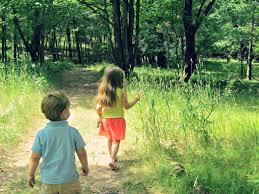 a walk in the woods walking in the woods angela amman
