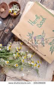 Drying Flowers In Books - vintage book bouquet daisy flowers against stock photo 367032722