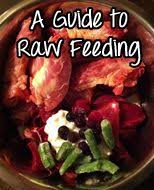 learn how to make raw dog food with keep the tail wagging dog
