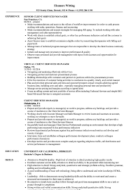 resume exles objective general hindi grammar book client services manager resume sles velvet jobs